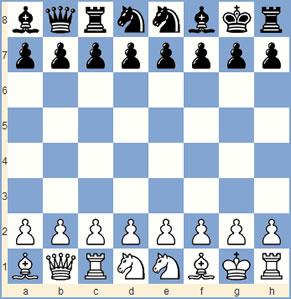 schaken 960 spel
